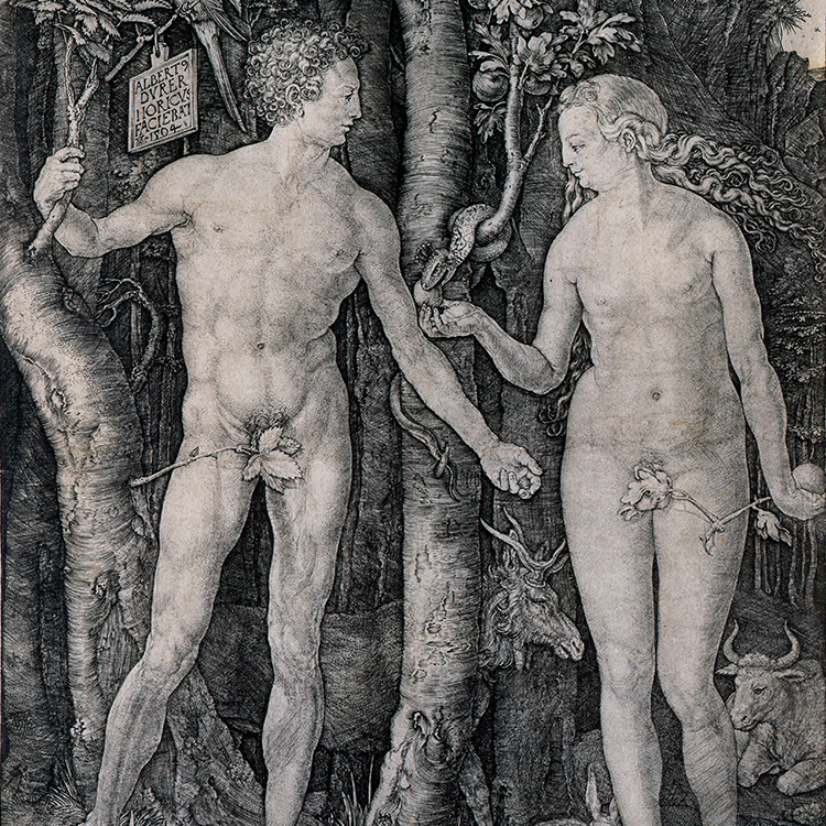 Adam and Eve by Durer
