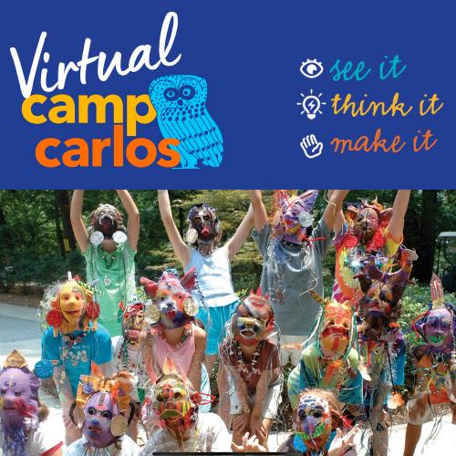 Virtual Camp Carlos 2021 - image