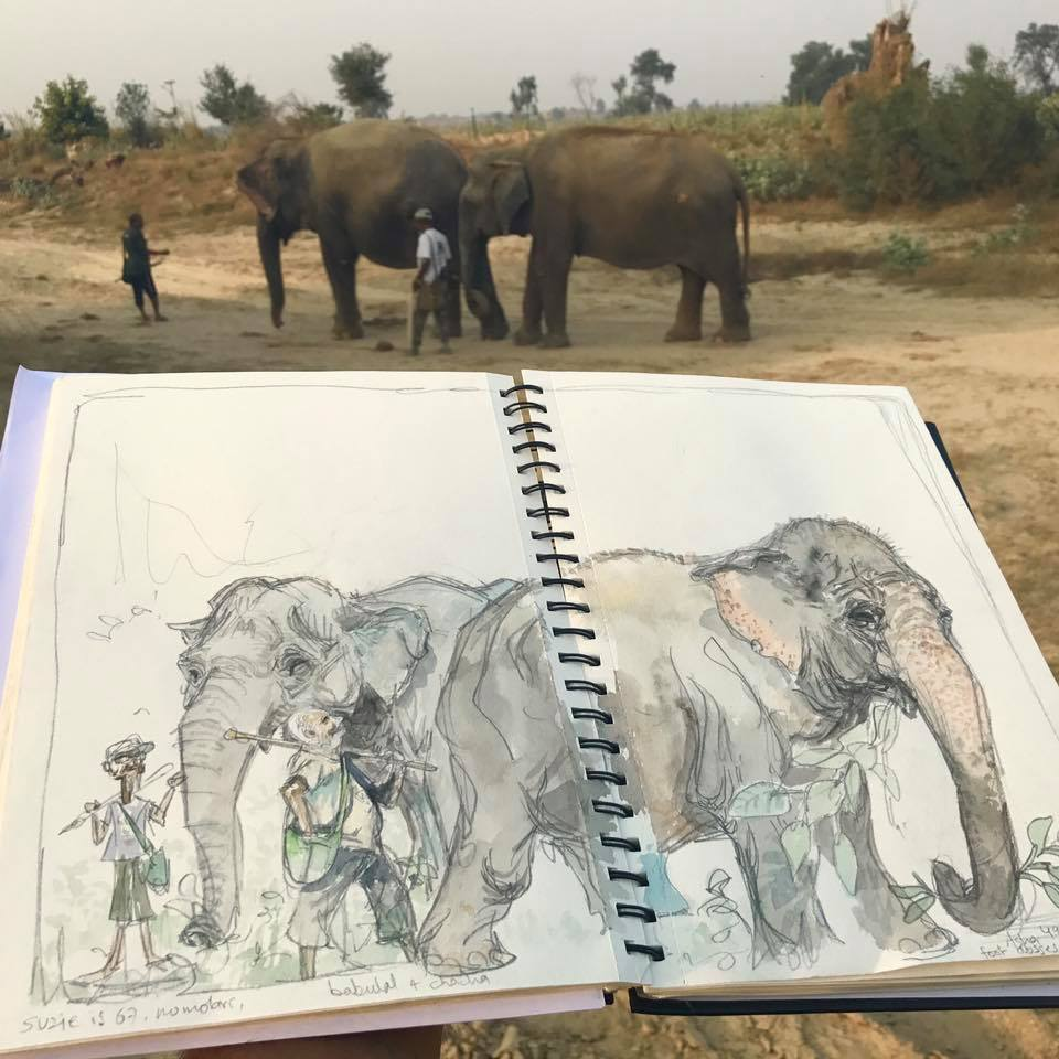 Elephant and sketchbook